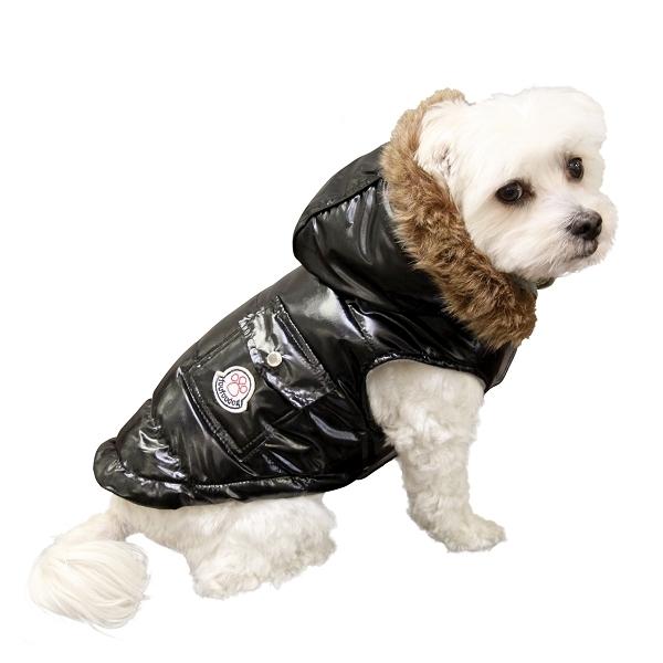 manteau pour chien moncler