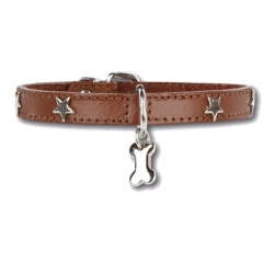 Collier pour chien Little Star Marron