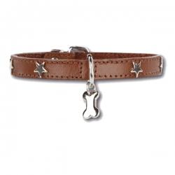 Collier pour chien Little Star Marron