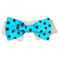 Nœud papillon pour chien bleu à pois