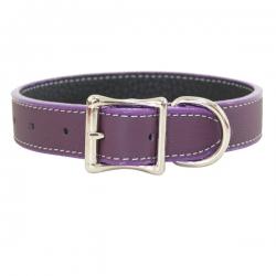 Collier pour gros chien violet