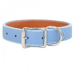 Collier pour gros chien bleu ciel