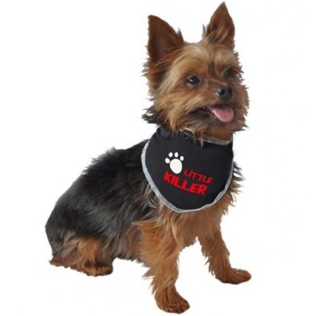 bandana pour chien little killer accessoires pour chien oh pacha. Black Bedroom Furniture Sets. Home Design Ideas