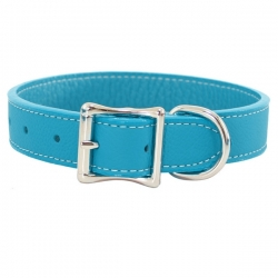 Collier pour gros chien turquoise