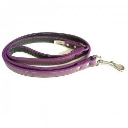 Laisse pour gros chien violette
