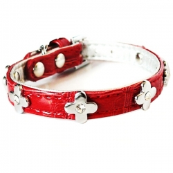 Collier pour chat glam rouge