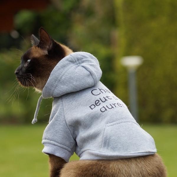 Sweat Pour Chat Et Chaton En Coton Gris V 234 Tements Pour