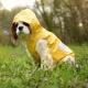 Ciré pour chien citron
