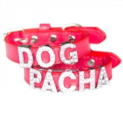 Collier pour chien à personnaliser rouge