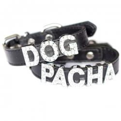 Collier pour chien à personnaliser noir
