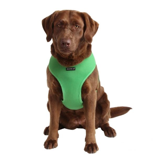 harnais pour chien et chiot vert puppia oh pacha. Black Bedroom Furniture Sets. Home Design Ideas