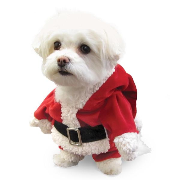 costume de noel pour chien d guisement de noel chien oh pacha. Black Bedroom Furniture Sets. Home Design Ideas