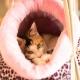 Lit pour chat Panthère Rose