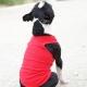 T-shirt pour chien rouge