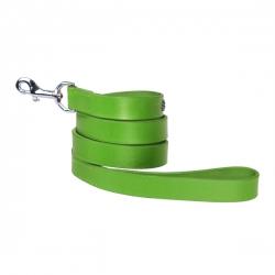 Laisse pour chien verte avec strass