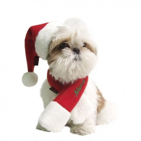 Bonnet et écharpe de Père Noël pour chien