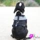 Harnais pour chien Navy Puppia