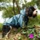 Imperméable pour chien coloris bleu