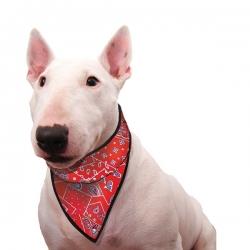 Bandana pour chien rafraîchissant