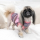 T-shirt pour chien Miss Glamour
