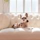 Manteau pour chien beige Puppia
