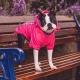 Imperméable pour chien coloris rose