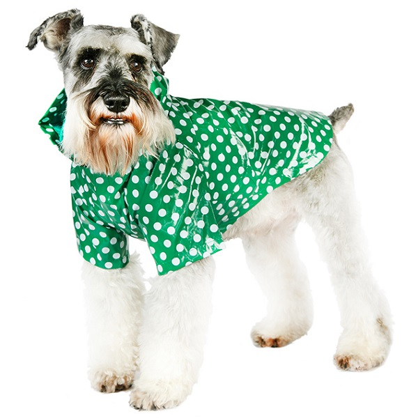 Imperméable pour chien Petit Lutin vert