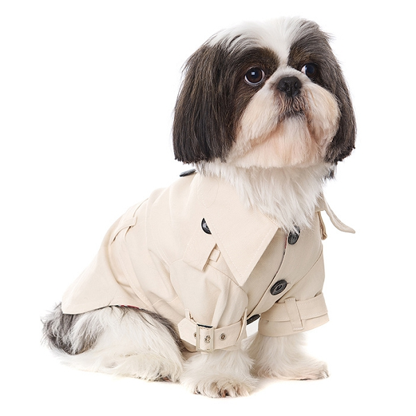 Manteau pour chien Trench