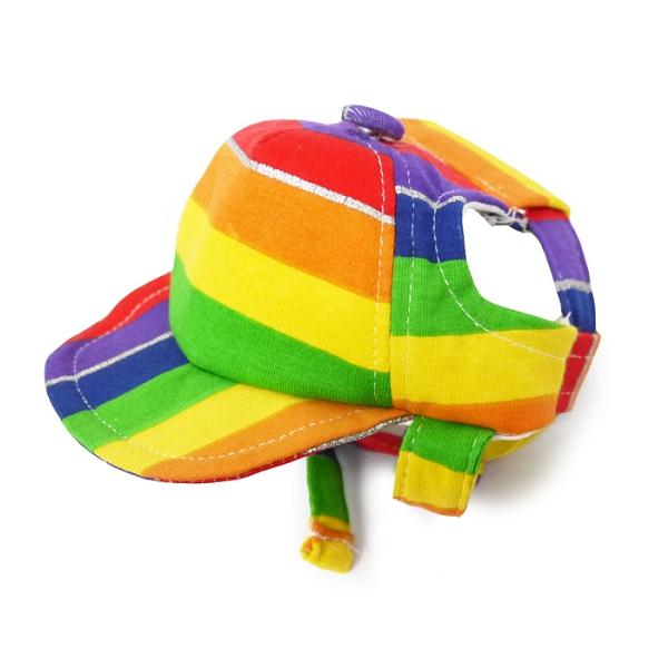 casquette accessoire chien