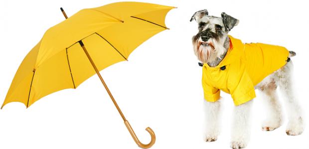 Imperméable coupe-vent pour chien jaune en vente chez Oh ! Pacha