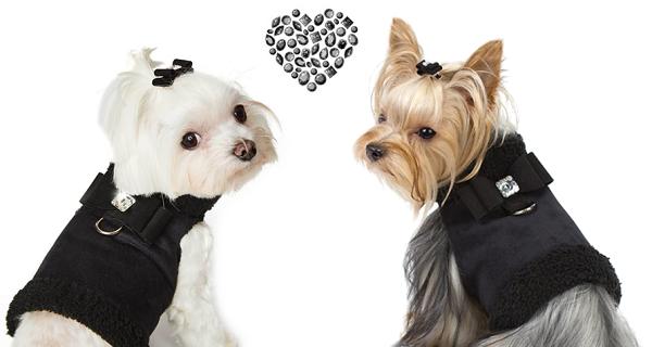 Manteau harnais pour chien noir