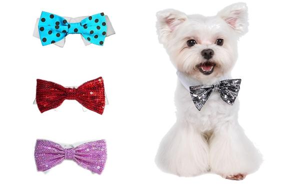 vente chaude réel limpide en vue qualité supérieure Nœud papillon pour chien disco ou rétro - Le Blog de la ...