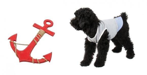 T-shirt pour chien matelot