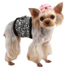 Culotte et bandeau anti-pipi pour chien
