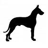 Le Dogue Allemand, le meilleur ami de l'homme