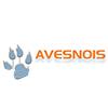 Annuaire de sites Avesnois