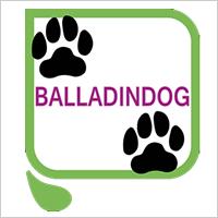 Ballading Dog