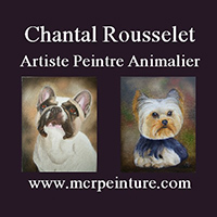 Chantal Rousselet Artiste peintre animalier