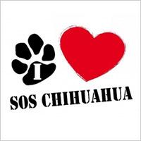 SOS CHIHUAHUA