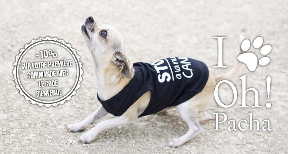 T-shirt pour chien noir Stop à la nudité canine - Oh ! Pacha
