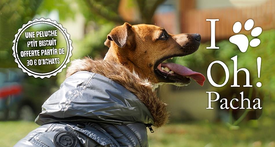 Peluche pour chien Ptit biscuit - Oh ! Pacha