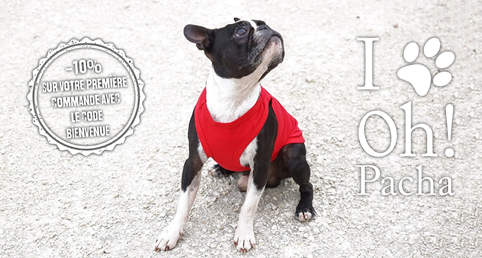 T-shirt pour chien rouge - Oh ! Pacha