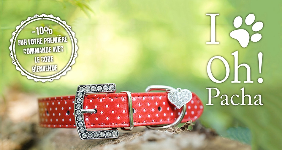 Collier pour chien Darling - Oh ! Pacha