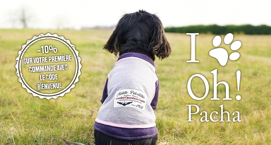 Sweat pour chien urban - Oh ! Pacha