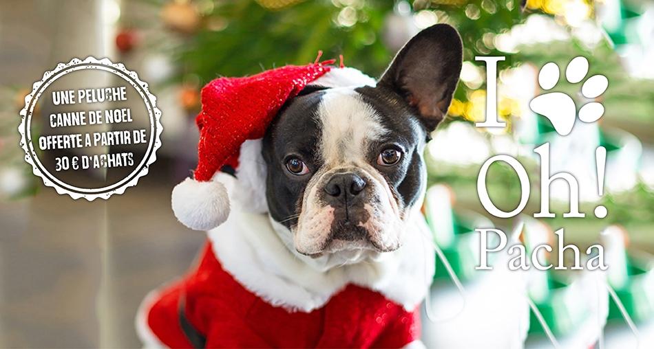 Peluche pour chien Canne de Noël - Oh ! Pacha