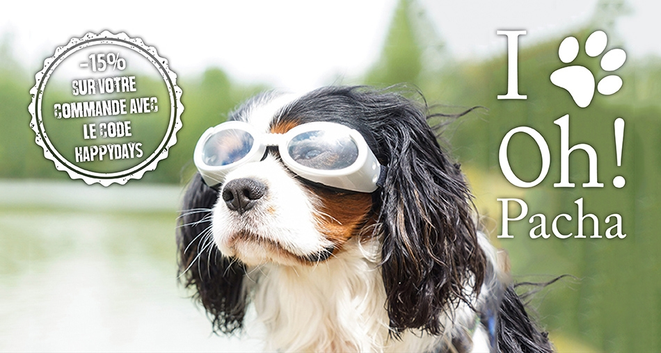 Lunettes pour chien silver - Oh ! Pacha