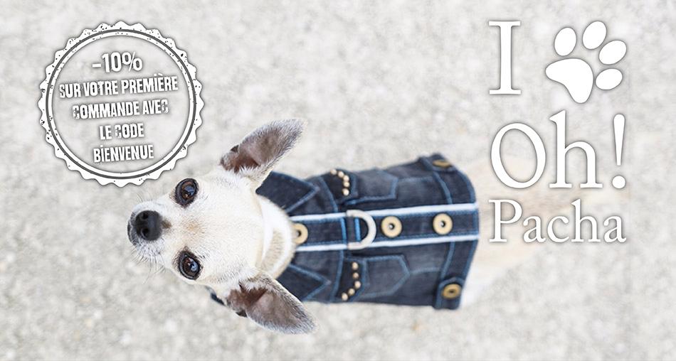 Harnais pour chien Santa Monica - Oh ! Pacha